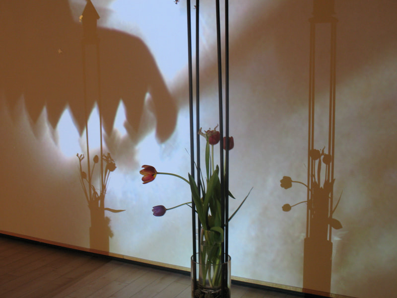 macanza/abbondanza installation, 2011 Installation details/shadows--organic elements/tulips, projected image detail.